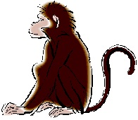 Click here for more details on Monkey in 2012