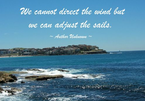 """We cannot direct the wind but we can adjust the sails""."