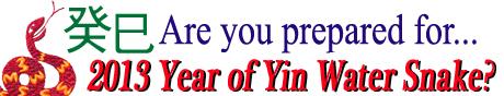 are you prepared for 2013?