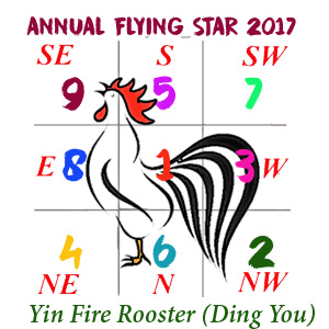 rooster- flying star 2017